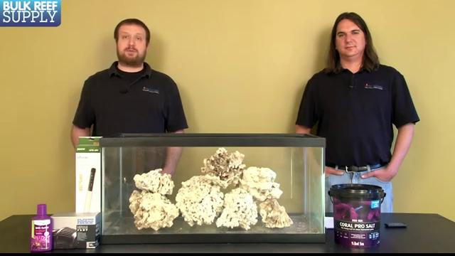 Curing Live Rock for Saltwater Aquariums